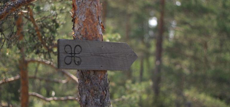 Kuvassa puinen nuoliohjauskyltti kiinnitettynä männyn runkoon.